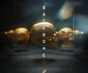 DROELOE – BACKBONE feat. Nevve [bitbird]