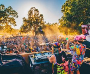 BREAKING: Dirtybird Offers Critical Update On East Coast Festival After Shutdown