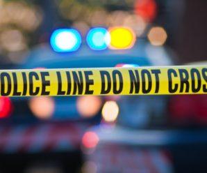 Major EDM Artists Speak Out After 17 Murdered At Florida High School
