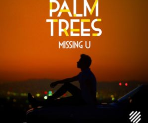 Palm Trees – Missing U