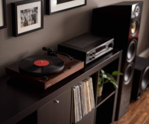 Why Vinyl Will Never Die, And How To Start Your Own Vinyl Collection