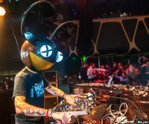 Deadmau5 Got A New Kitten & She's Just Too Damn Cute [PHOTOS]