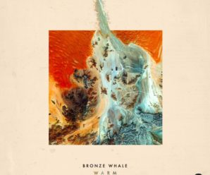 Your EDM Premiere: Bronze Whale – Warm