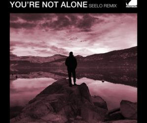 Adam K – You're Not Alone (Seelo Remix)
