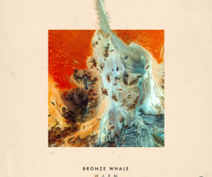 Bronze Whale – Warm (LMBO Remix) [Free DL]