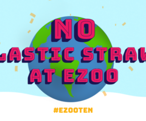 Electric Zoo removes plastic straw use from festival