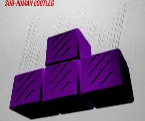 Doctor P – Tetris (SUB-human Remix)
