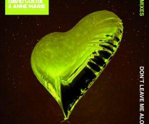 Exclusive Premiere: David Guetta feat Anne-Marie – Don't Leave Me Alone (Sidney Samson Remix)