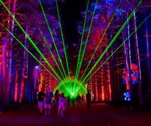 One Month Later The Man Who Went Missing At Electric Forest Has Still Not Been Found