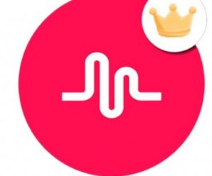 Popular Music Platform Rebrands and Merges With Parent Company