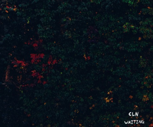 cln – Waiting For You