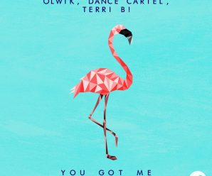 "EDMSauce Premiere: OLWIK, Dance Cartel & Terri B! Team Up On Uplifting House-Influenced Single ""You Got Me"""