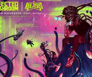 Infected Mushroom and Bliss make psychedelic fireworks on new single, 'Bliss on Mushrooms' – Dancing Astronaut