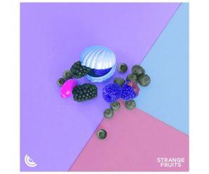 Steve Void, BEAUZ & Wave Wave – Bending (ft. Joey Busse) (Marvin Vogel & Panuma Remix)