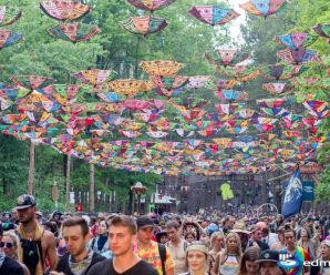 Electric Forest Offers New Level Of Affordable Eco-Camping Taking Inspiration From European Festivals