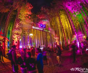Electric Forest declares return to single-weekend format – Dancing Astronaut