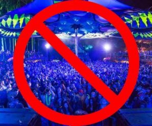 NSW Police are searching for much more energy to close down festivals