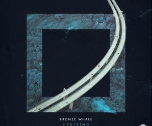 Bronze Whale breaks into 2019 with wavy new single, 'Cruising' – Dancing Astronaut