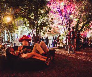 Damian Lazarus' Get Lost boasts 60+ artist billing with Diplo, Claude VonStroke, DJ Tennis, Tiga, Felix Da Housecat, & many extra – Dancing Astronaut