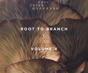 Lane eight releases 'Root to Branch Vol. four' compilation