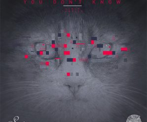 Premiere: Listen to the primary tracks of Coyu's debut LP, 'You Don't Know' – Dancing Astronaut