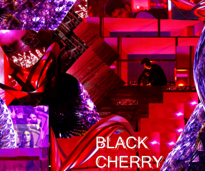 PETTER Releases Debut Effort Black Cherry