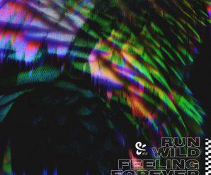 PLS&TY – Run Wild/Feeling Forever – Dancing Astronaut