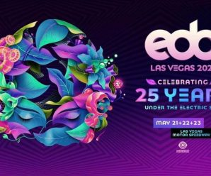 EDC 25th Anniversary Officially Postponed To 2021