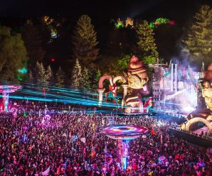 Rothbury Council Approves Electric Forest 2021 Dates