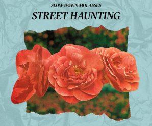 "Slow Down Molasses – ""Street Haunting"""